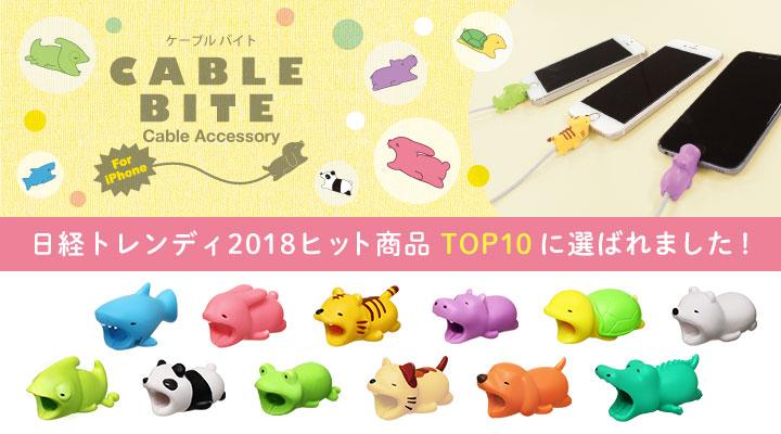 日経トレンディ2018ヒット商品TOP10に選ばれました!